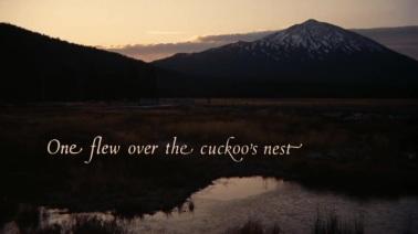 One Flew Over the Cuckoo's Nest/Guguk Kuşu